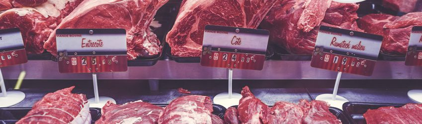 by-products in pet food / biprodukter i kæledyrsfoder